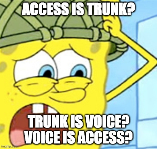Access is Trunk, Trunk is Voice, Voice is Access?